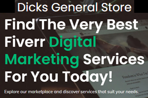 DICK'S GENERAL STORE FIVERR STORE
